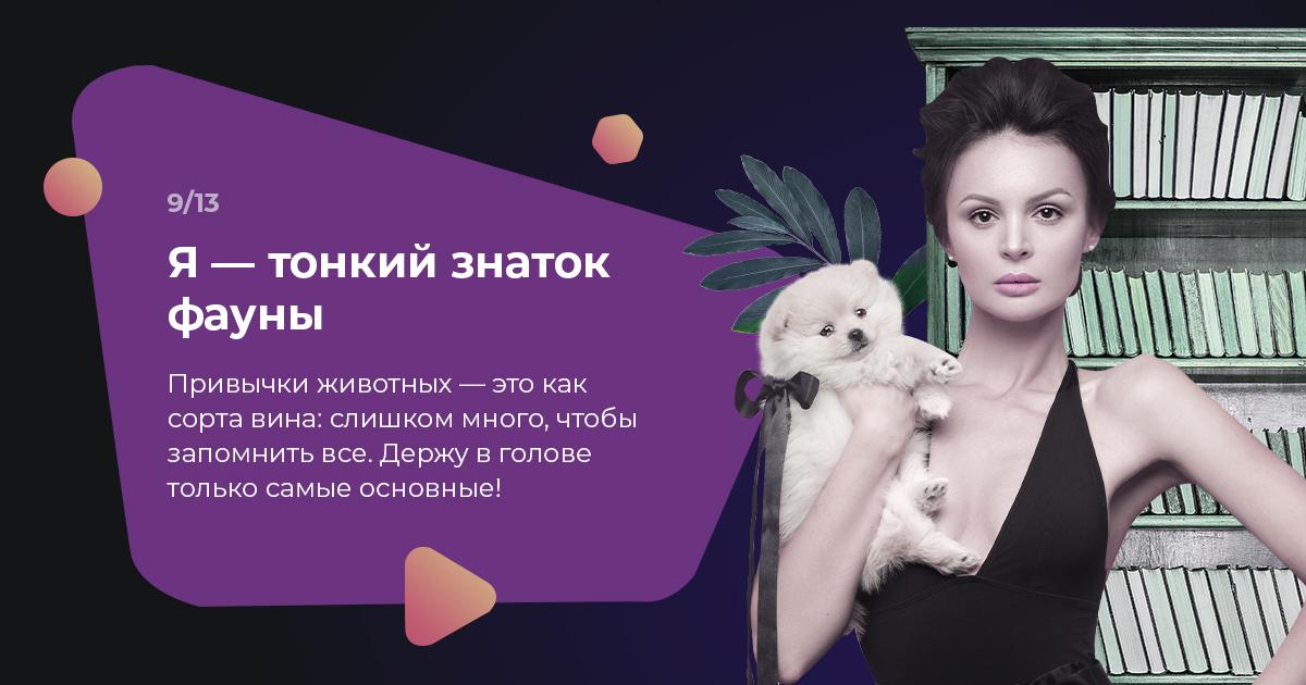 https://quiz.lifehacker.ru//uploads/attachment/image/14685/image1594129740824.jpg